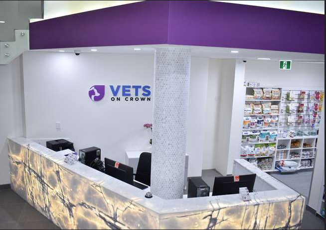 Vets On Crown Surry Hills NSW